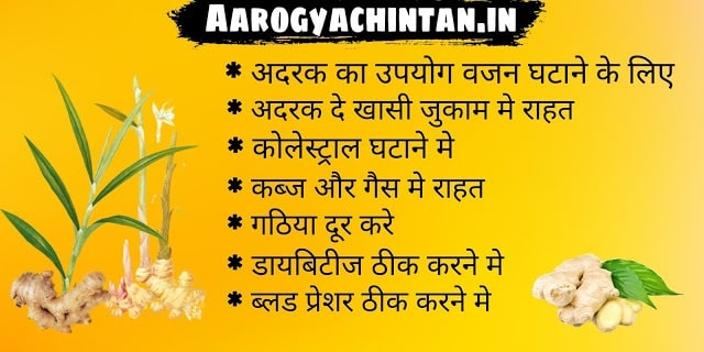 अदरक के फायदे और नुकसान - Adrak ke Fayde Aur Nuksan (Side Effects And Benefits Of Ginger in Hindi)