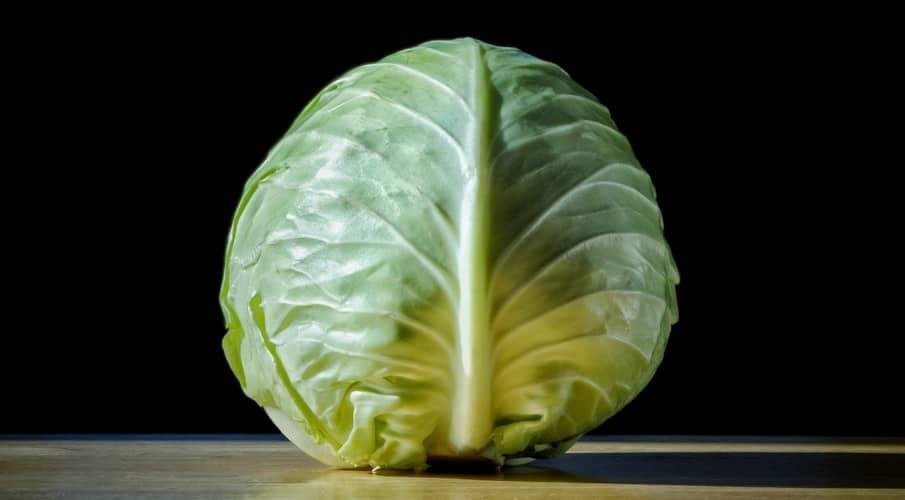 patta gobhi khane ke fayde, Patta gobhi benefits in hindi, पत्ता गोभी खाने के फायदे, Benefits Of cabbage in Hindi, Cabbage Khane ke Fayde, Patta Gobhi ke fayde, Patta Gobhi Khane Se Kya Hota Hai, पत्ता गोभी के फायदे, पत्ता गोभी खाने से क्या होता है, पत्ता गोभी खाने के फायदे और नुकसान, patta gobhi khane ke Nuksan, patta gobhi khane ke fayde Aur Nuksan,