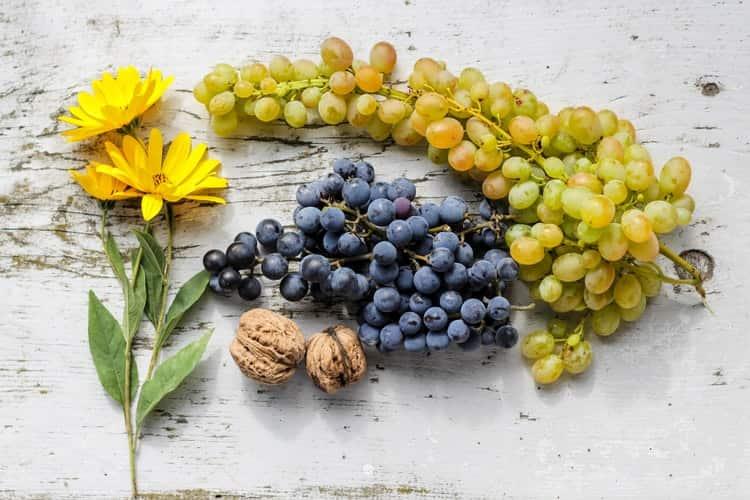 अंगूर खाने के फायदे और नुकसान - Grapes Benefits and Side Effects in Hindi – Angur khane Ke Fayde Aur Nuksan – अंगूर के रस के फायदे