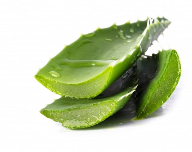 एलो वेरा जूस के फायदे और नुकसान – Aloe Vera Juice Ke Fayde Aur Nuksan - Aloe Vera Juice Benefits and Side Effects in Hindi – Aloe Vera in Hindi