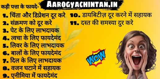 मीठे नीम / कढ़ी पत्ते के फायदे और नुकसान – Kadi Patta Ke Fayde Aur Nuksan – Curry Leaves Benefits and Side Effects In Hindi