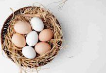 अंडे में कितना प्रोटीन होता है? – Ek Ande Me Kitna Protein Hota Hai (How Much Protein in Egg in Hindi)