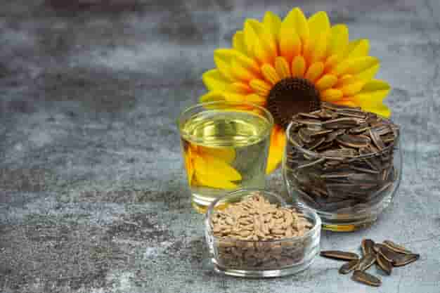 सूरजमुखी के बीज के फायदे और नुकसान - Surajmukhi ke beej ke fayde aur nuksan in Hindi - Disadvantages and Benefits of Sunflower Seeds in Hindi